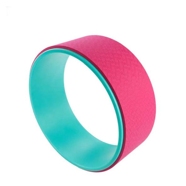roue-dorsale-vert-rose