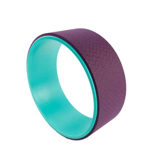 roue-dorsale-vert-violet