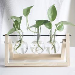 myplant-3-vases