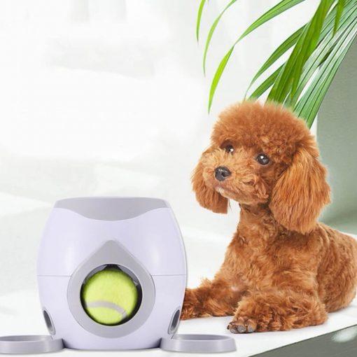 Balle automatique pour chien