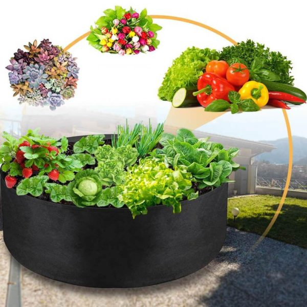 Culture de légumes dans des sacs