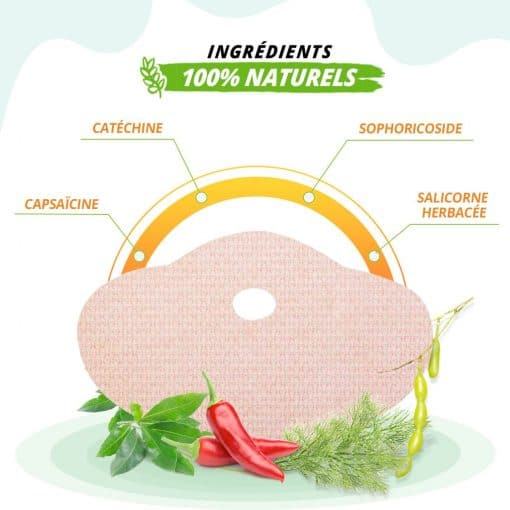Patch de perte de poids aux ingrédients 100% naturels