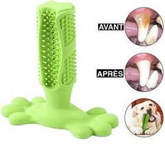 Brosse à dents pour chien Boom Attitude