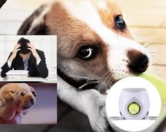 Lanceur de balles pour les chiens Boom Attitude