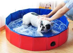 Baigner son chien avec DoggyPool